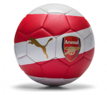 Arsenal Fan Football 17/18